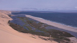 Namibian Ramsar Sites – Sandwich Harbour