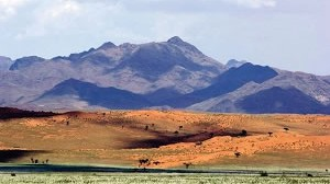 Maps, Tips and All you need to Know about the Namib Naukluft Park