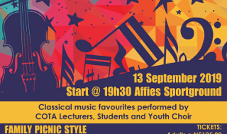 Classical Music Concert under the Stars