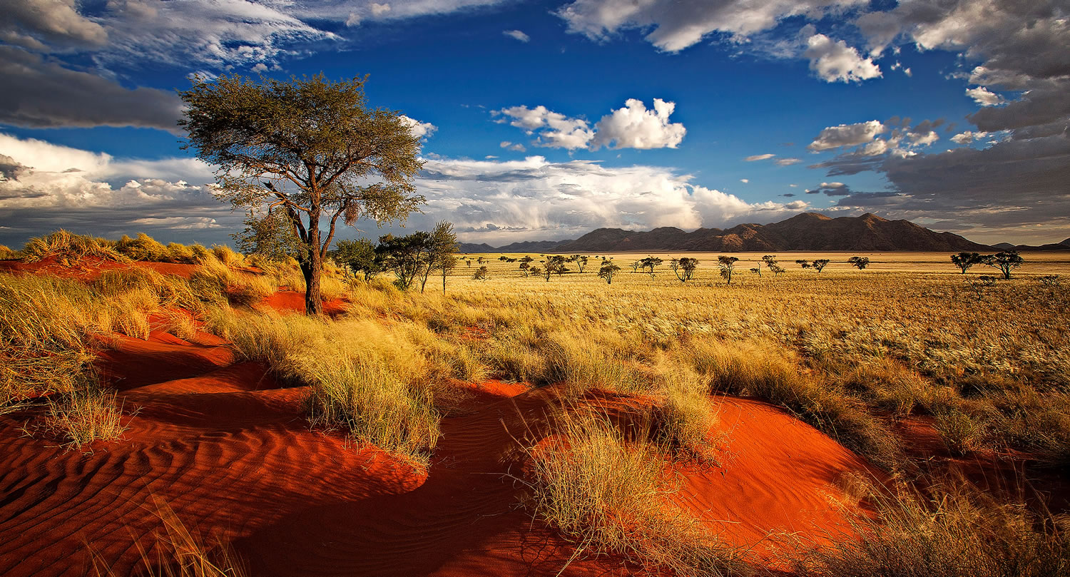 namibia accommodation events news last minute deals special